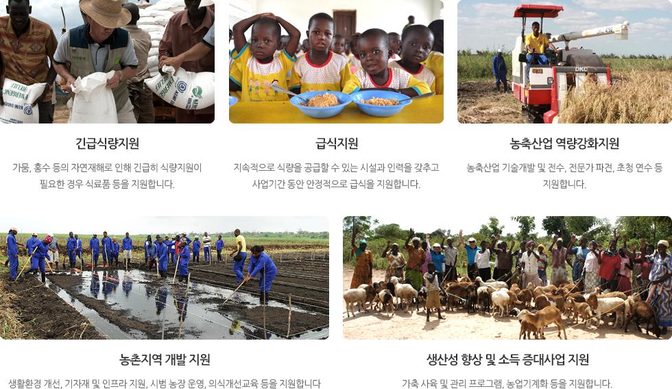 긴급식량지원,급식지원,농축산업 역량강화지원,농촌지역 개발 지원,생산성 향상 및 소득 증대사업 지원